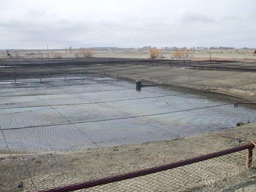 American Netting protects birds & other wildlife. Industrial netting